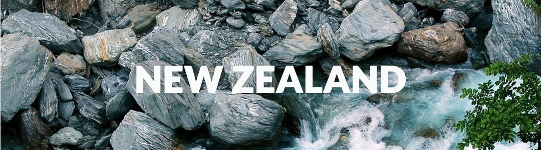 Work in New Zealand as dentist